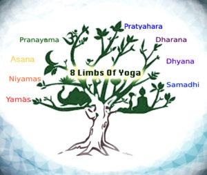amritayoga.com_Yoga Talks_Ashtanga Yoga-The Eight Limbs of Yoga